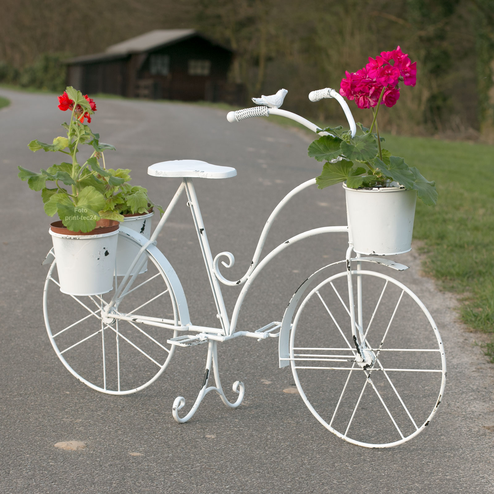 pflanzfahrrad metall wei dekofahrrad gartendeko pflanztopf blumenfahrrad shabby ebay. Black Bedroom Furniture Sets. Home Design Ideas
